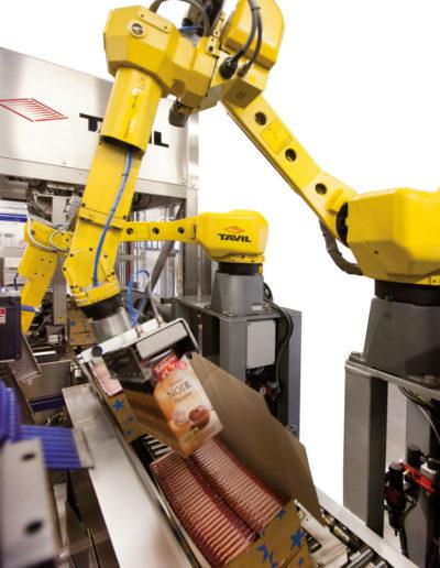 Detail vom Robot CEMOI