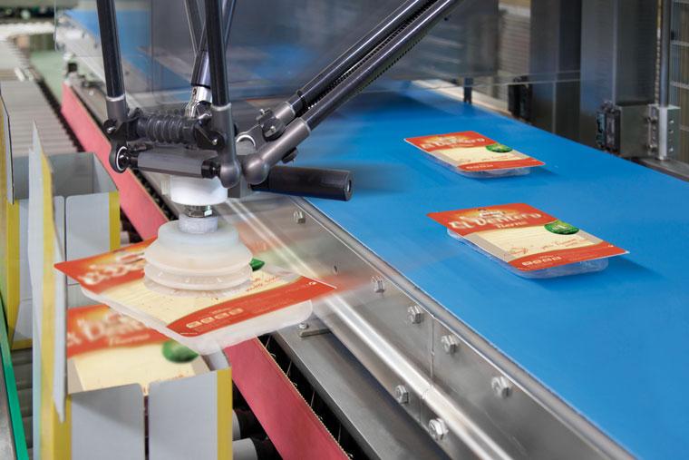 Schnittkaese, Robotoer Kartonverpackung
